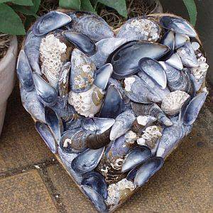 Handmade mussel shell heart