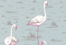 blue-pink-flamingo
