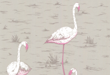 grey-pink-flamingo