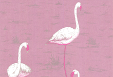 pink-flamingo-wallpaper