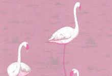 pink-flamingo-wallpaper