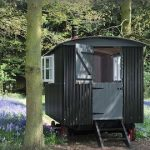 Cosy Retreats: Posey The Bluebell Wood