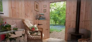 Escape to a bluebell wood retreat