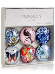 Monsoon Pasadena magnet set