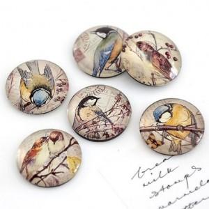 Vintage bird magnets