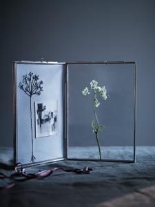 Vintage enclosed decorative display frame