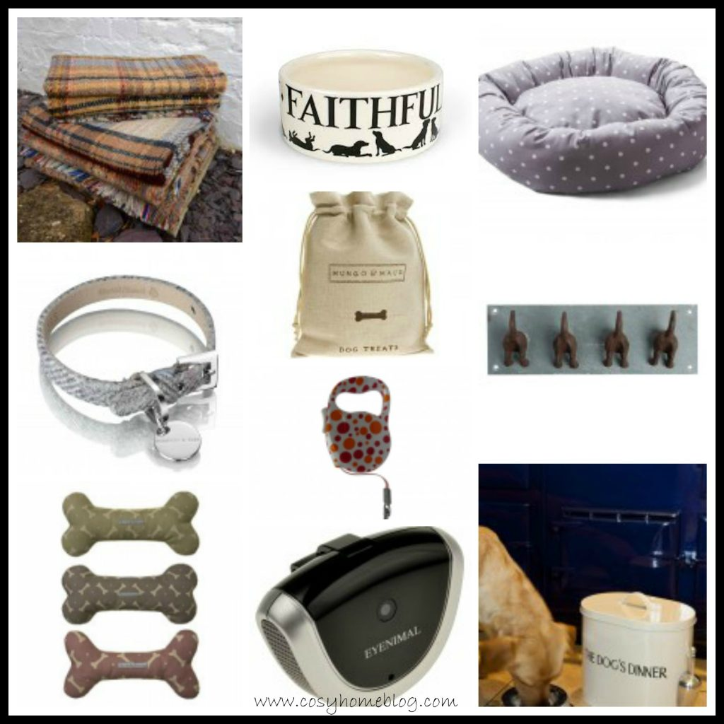 Cosy Home Pets: Top 10 accessories for your dog