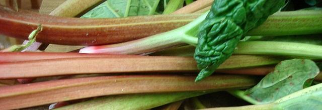 Rediscovering rhubarb