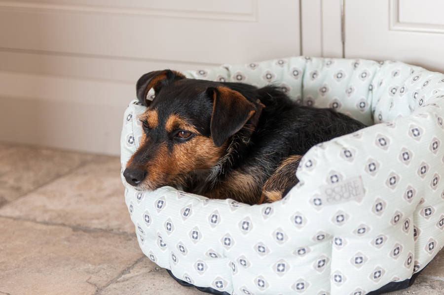 Cosy Ochre and Ocre pet bed, with high sides to keep out the draughts.