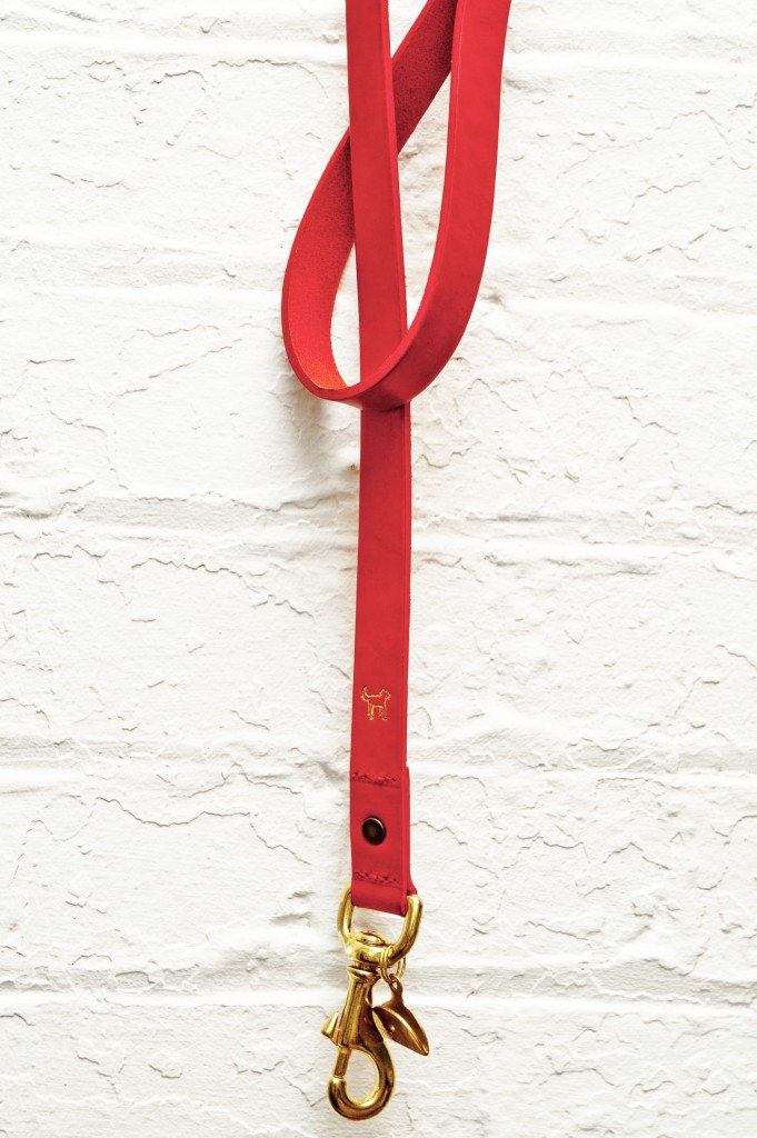 Go for walkies in style, with this posh red dog lead.