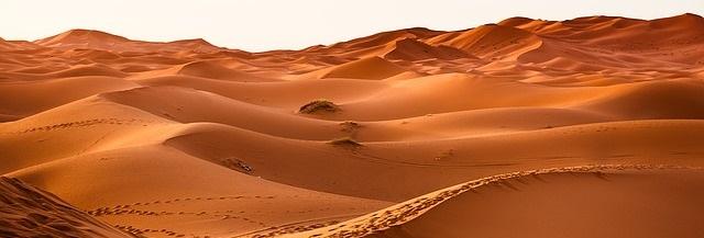 Sandy chic: 10 ideas for desert-themed interiors