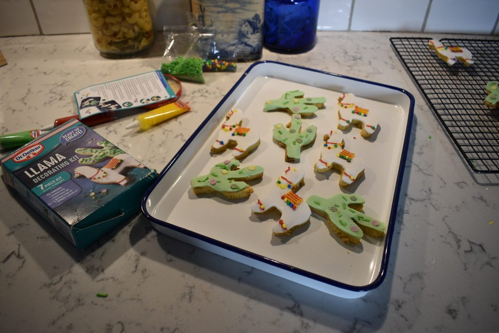 Llama biscuits: decorating set from Dr. Oetker reviewed
