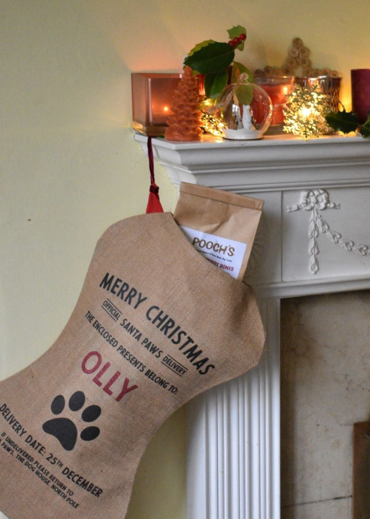 Lovely personalised stocking for a dog's first Christmas