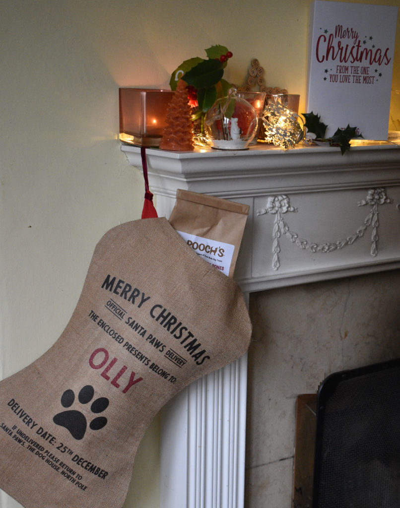 Make Christmas special for your pets, with a personalised stocking of gifts