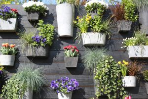Get creative with your garden fence, like hanging lots of colourful plants in pots along your fence