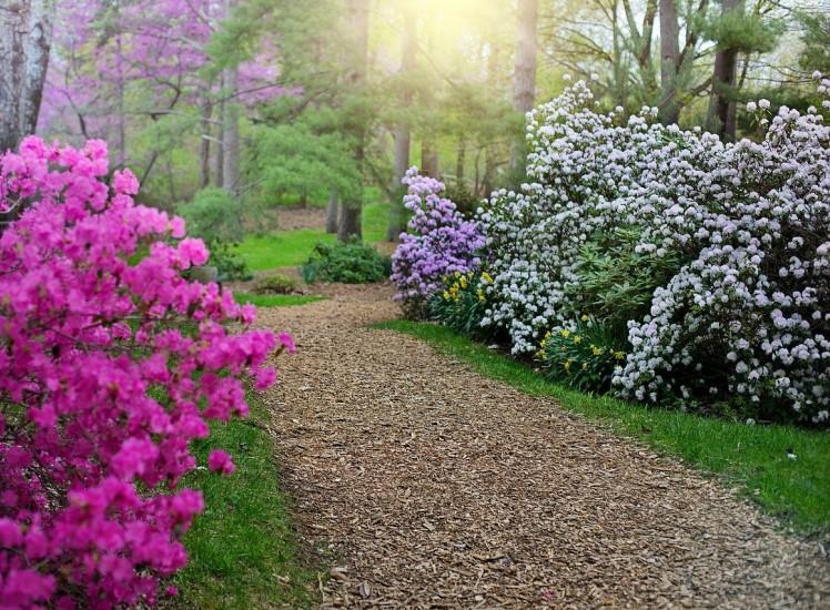 10 UK Gardens To Visit This Summer